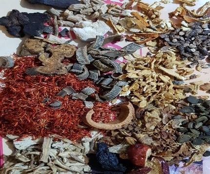 verschiedene Kräuter und chinesische Medikamente